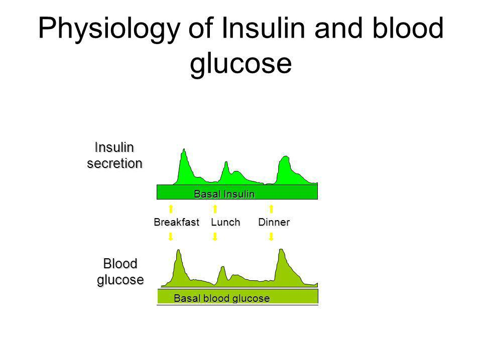 Physiology of Insulin and blood glucose