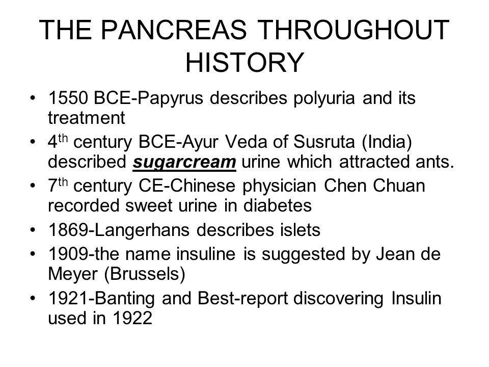 THE PANCREAS THROUGHOUT HISTORY