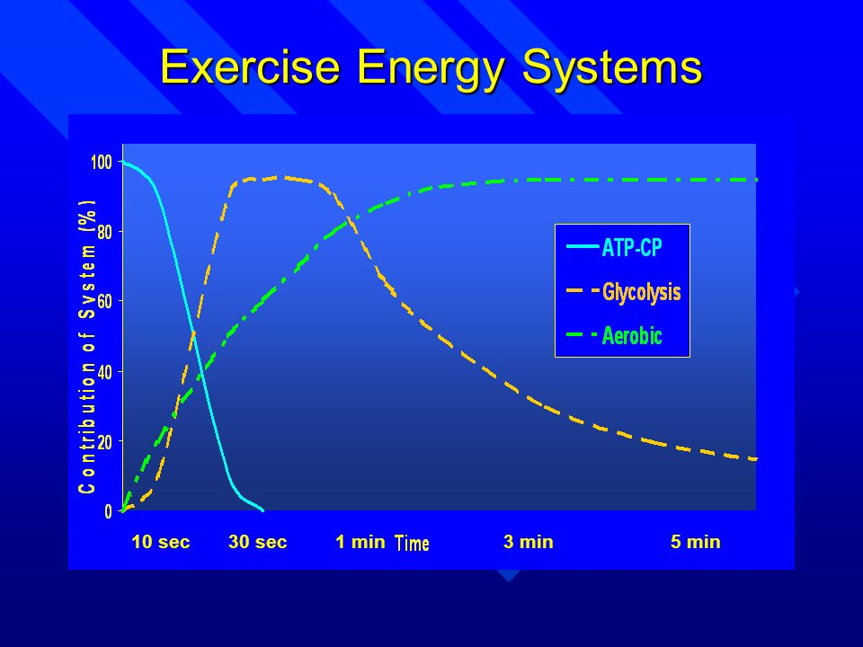 Exercise Energy Systems