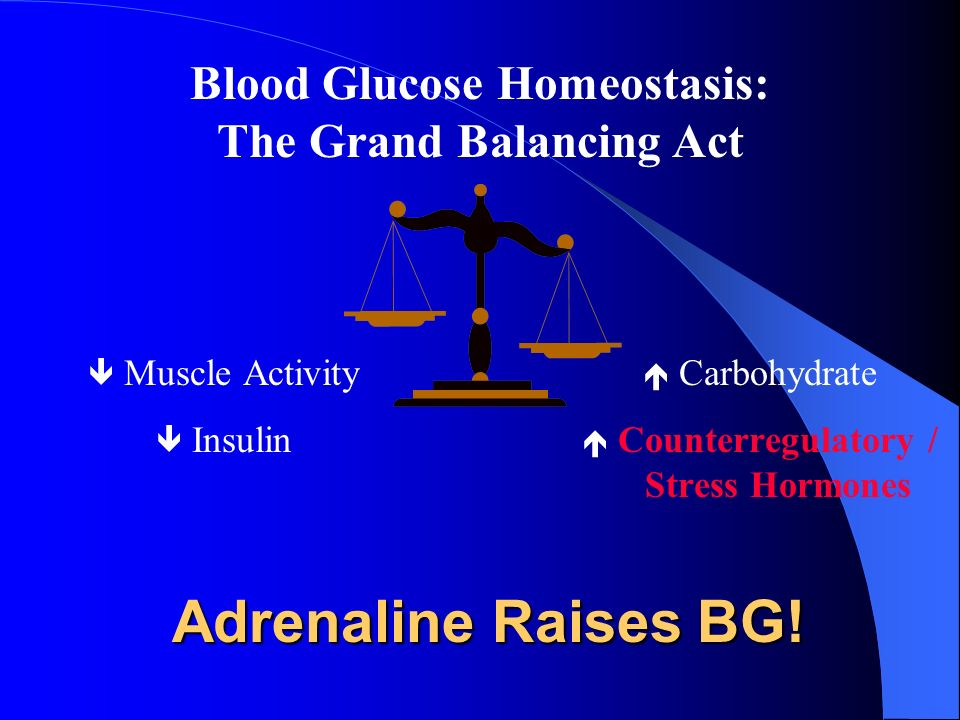 Adrenaline Raises BG! Blood Glucose Homeostasis: