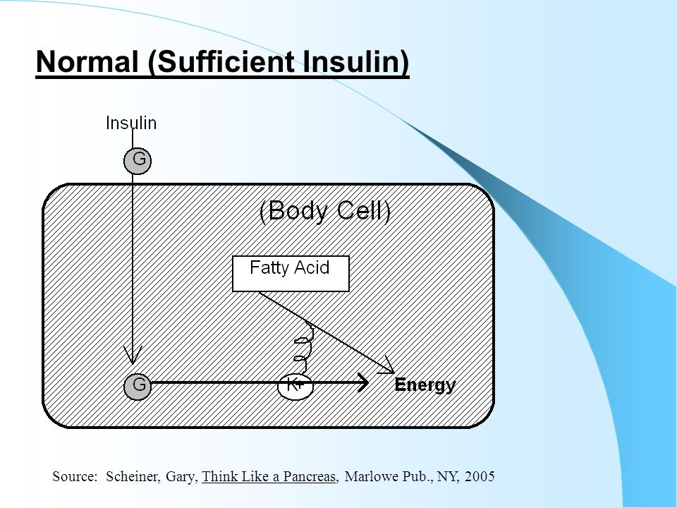 Normal (Sufficient Insulin)