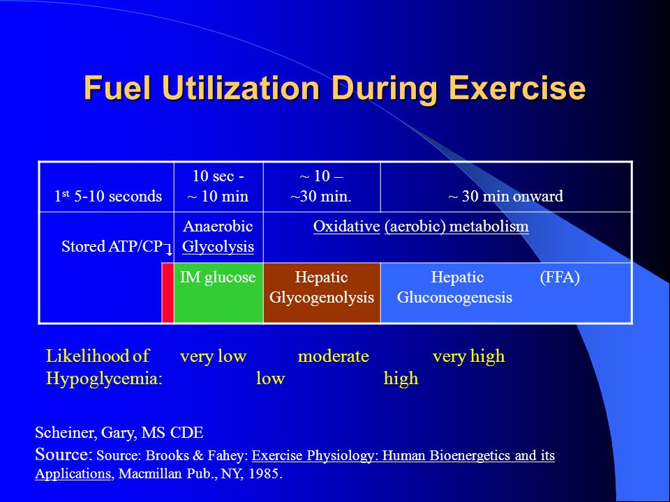 Fuel Utilization During Exercise