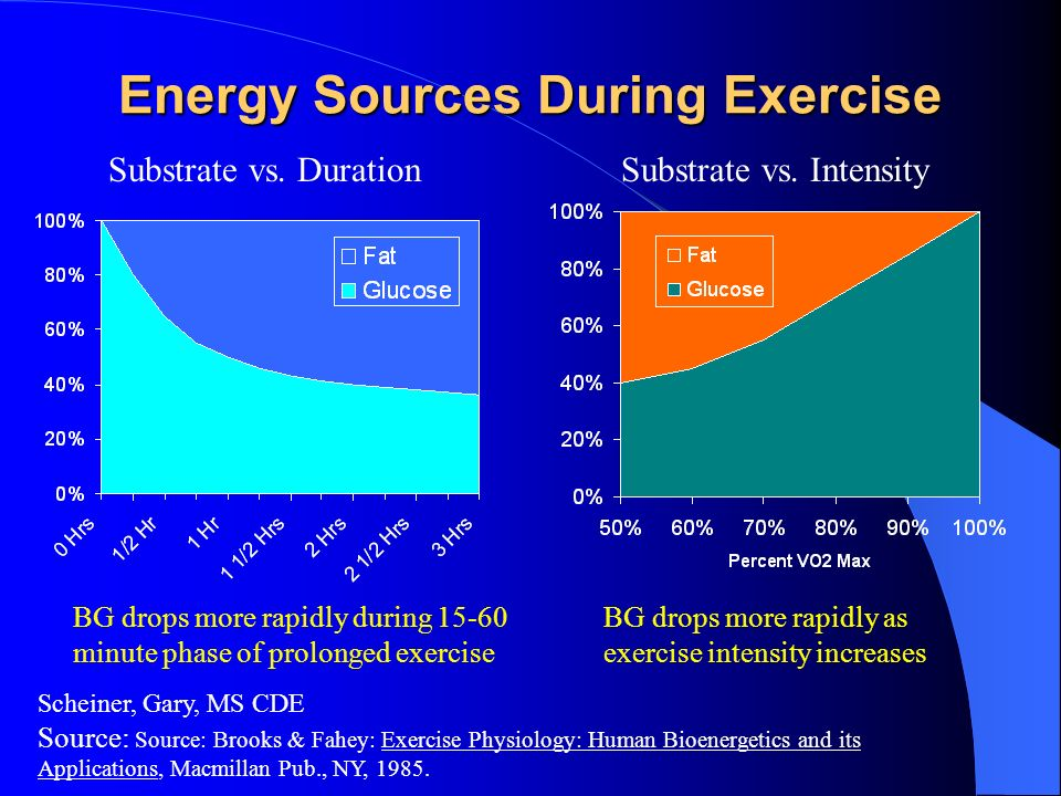 Energy Sources During Exercise