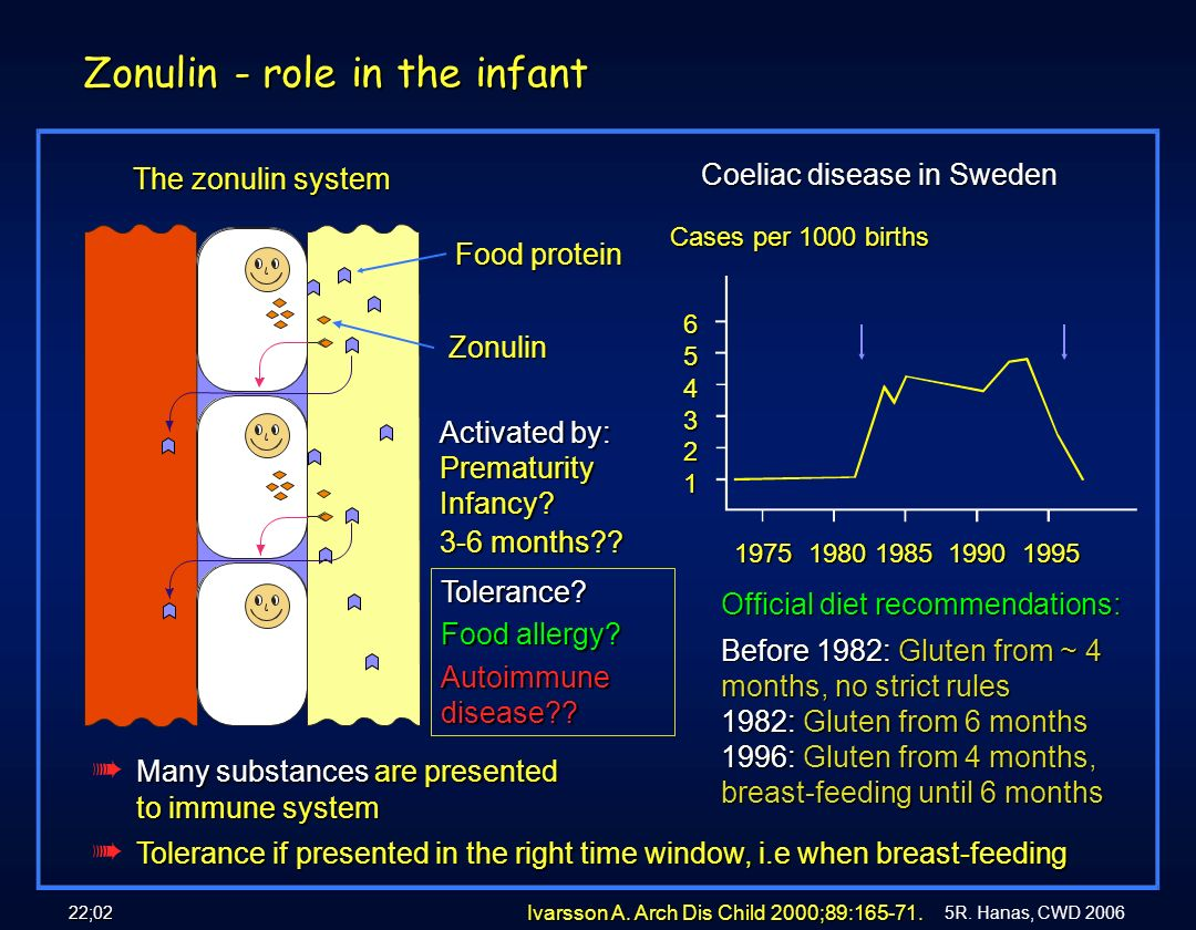 Zonulin - role in the infant