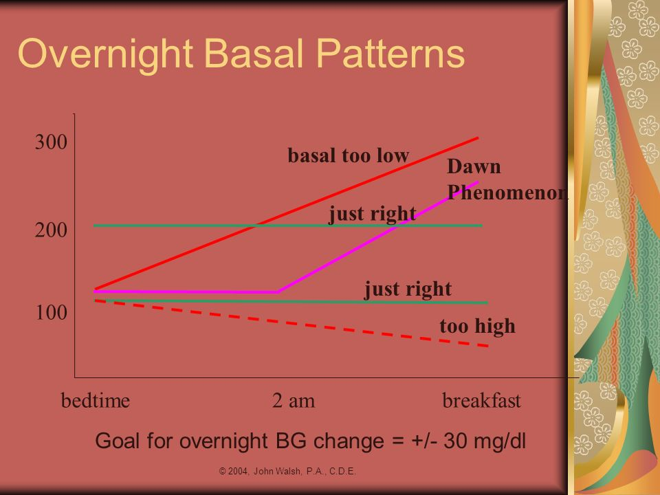Overnight Basal Patterns