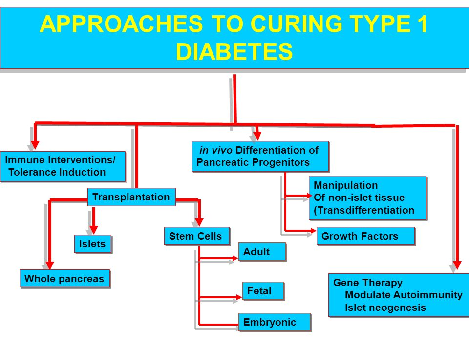 APPROACHES TO CURING TYPE 1 DIABETES
