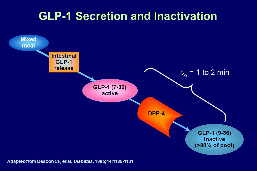 GLP-1 Secretion and Inactivation