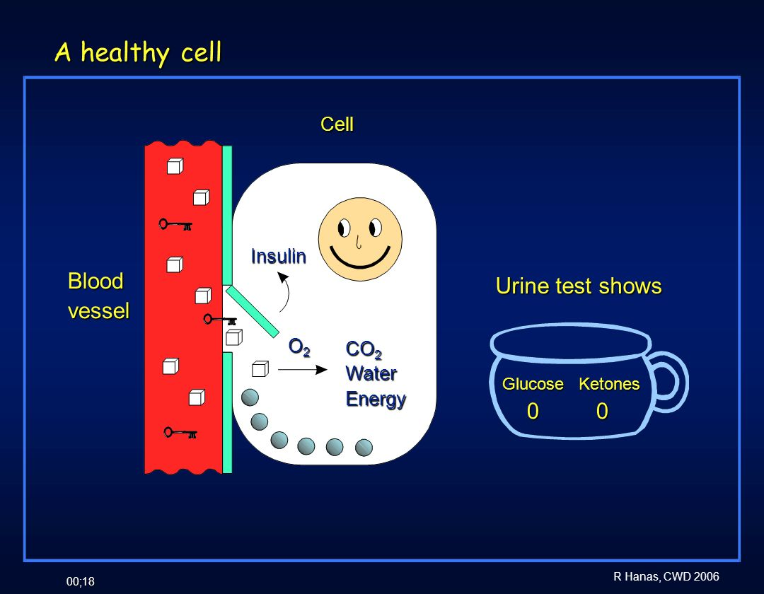A healthy cell Blood Urine test shows vessel 0 0 Cell Insulin O2 CO2
