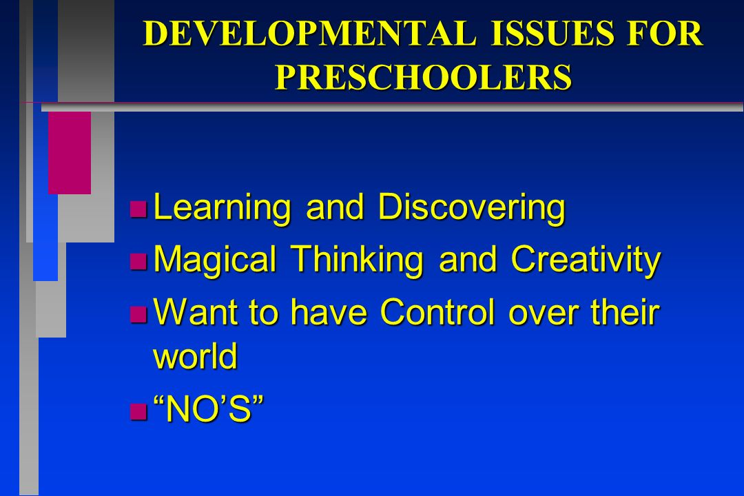 DEVELOPMENTAL ISSUES FOR PRESCHOOLERS