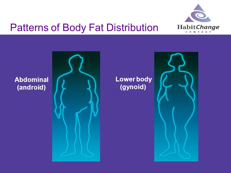 Patterns of Body Fat Distribution