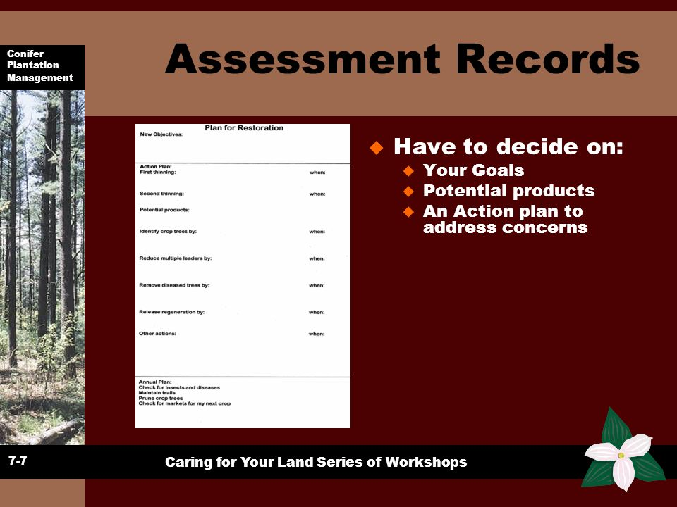 Assessment Records Have to decide on: Your Goals Potential products