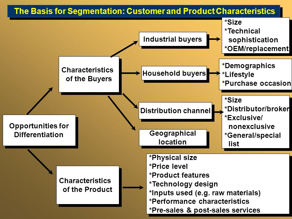 The Basis for Segmentation: Customer and Product Characteristics