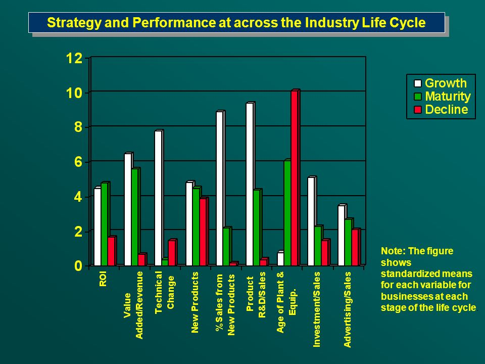 Strategy and Performance at across the Industry Life Cycle