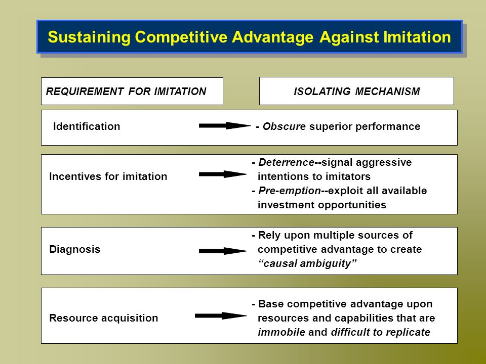 Sustaining Competitive Advantage Against Imitation