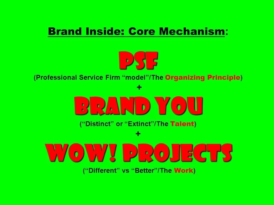Brand Inside: Core Mechanism: PSF (Professional Service Firm model /The Organizing Principle) + Brand You ( Distinct or Extinct /The Talent) + Wow.