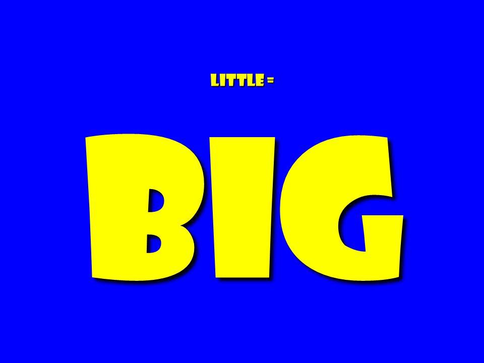 Little = BIG 152