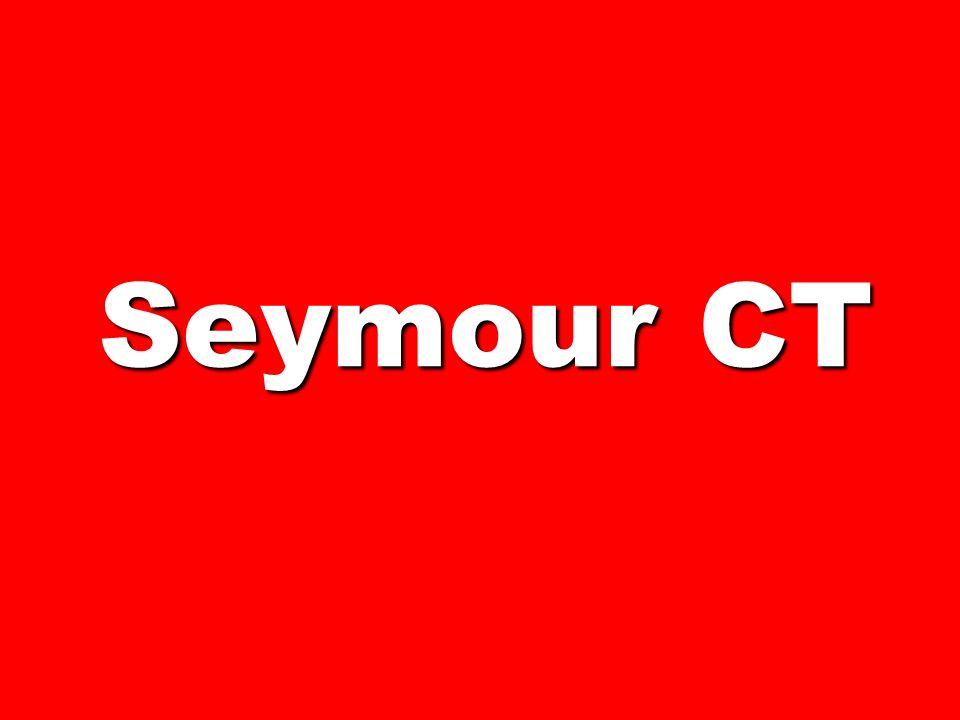 Seymour CT 175