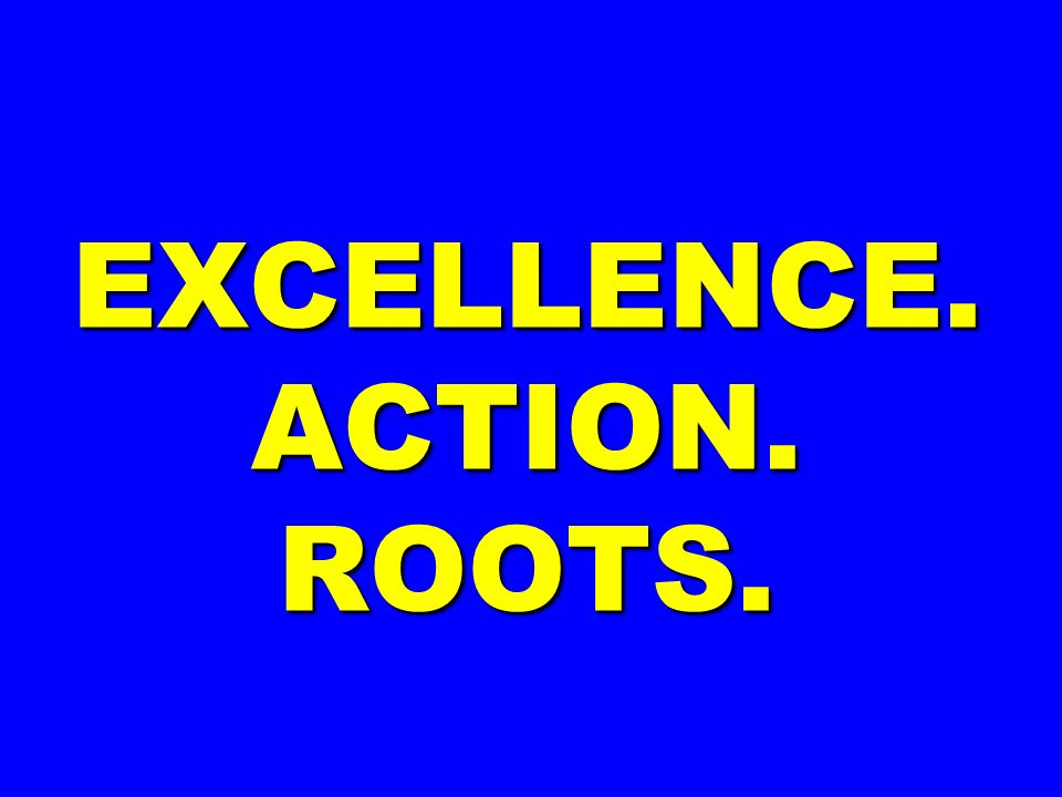 EXCELLENCE. ACTION. ROOTS.