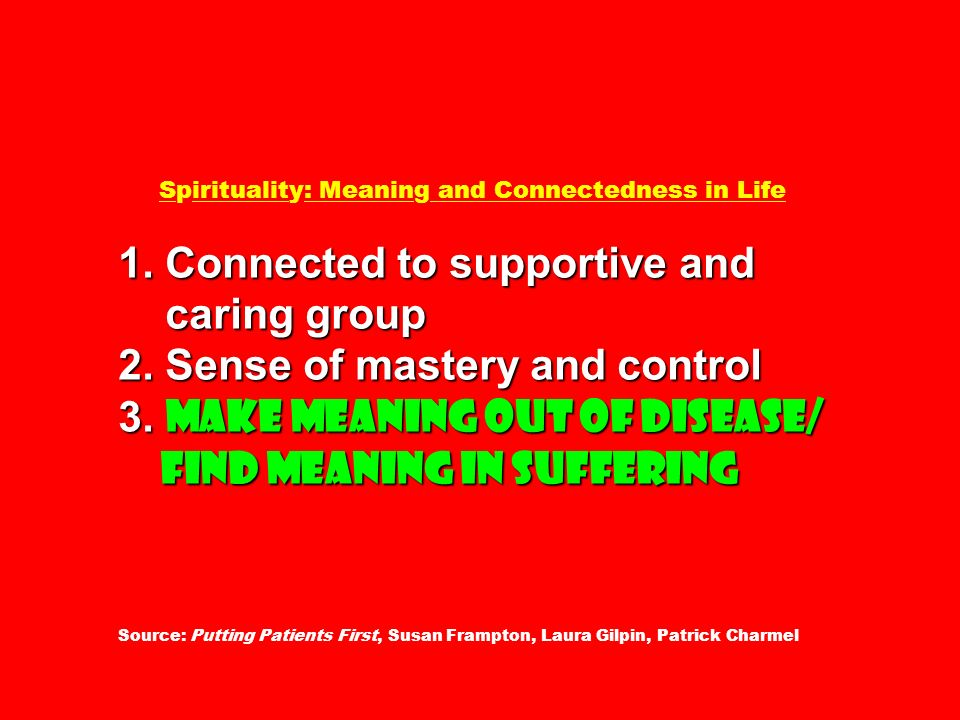 Spirituality: Meaning and Connectedness in Life 1