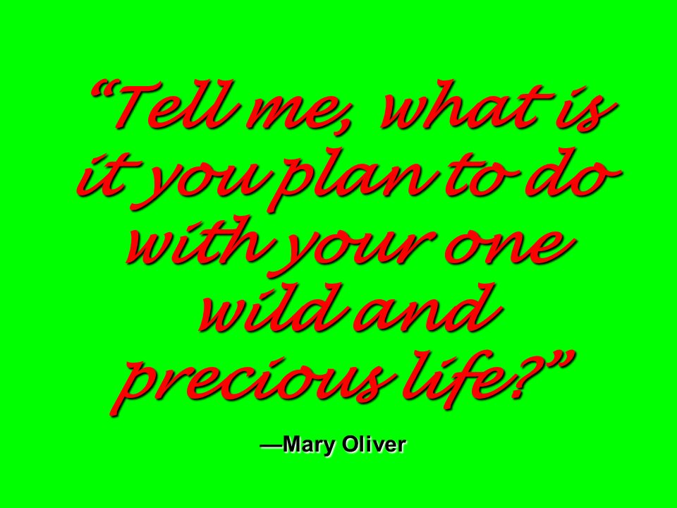 Tell me, what is it you plan to do with your one wild and precious life —Mary Oliver