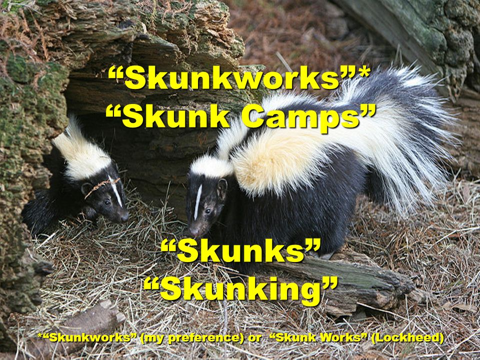 * Skunkworks (my preference) or Skunk Works (Lockheed)