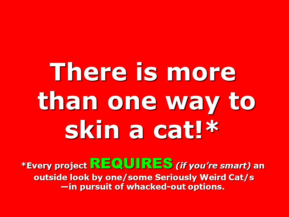 There is more than one way to skin a cat!*