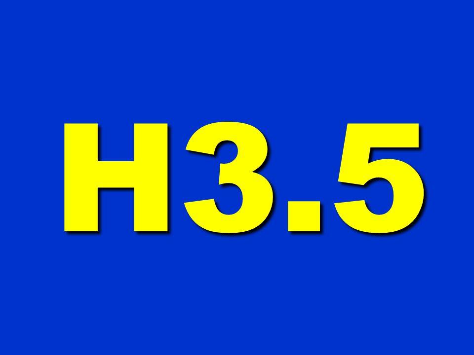 H3.5 200