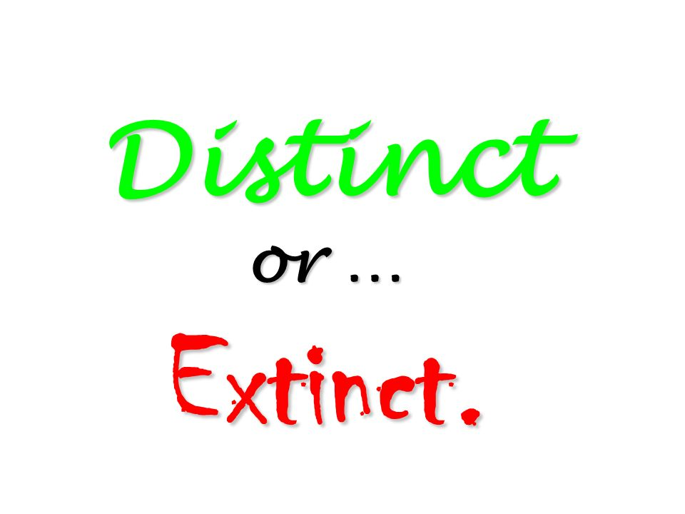 Distinct or … Extinct. 205
