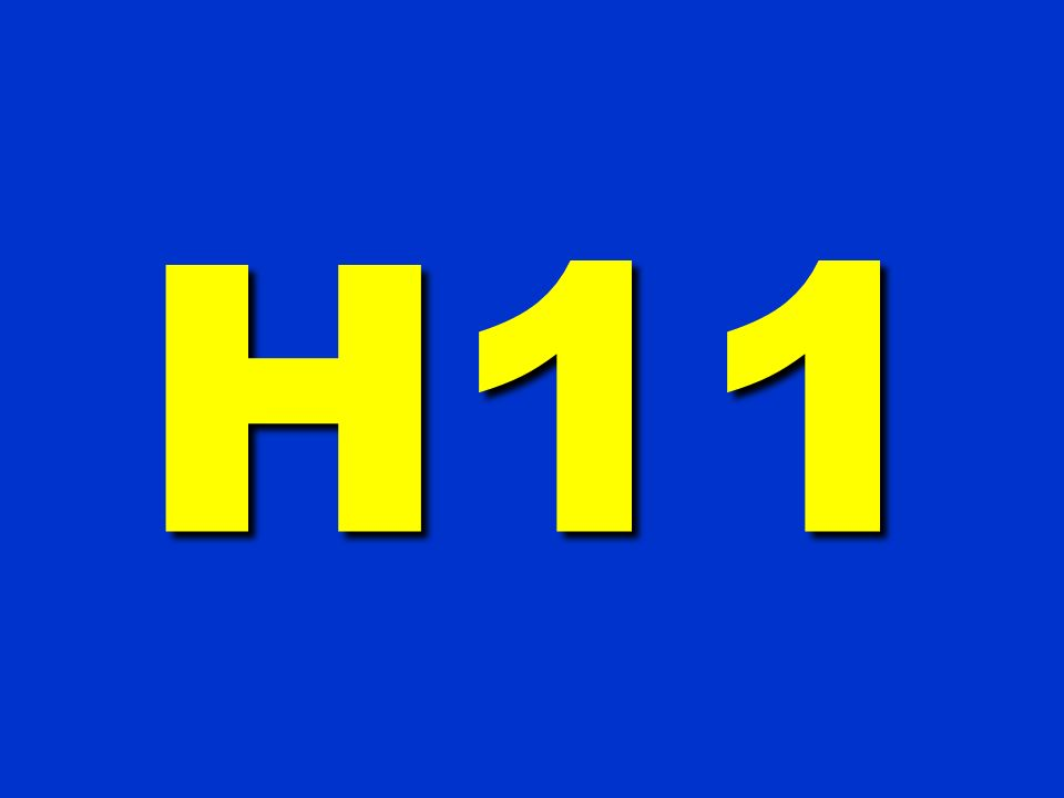 H11 338