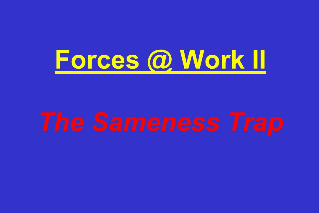 Work II The Sameness Trap