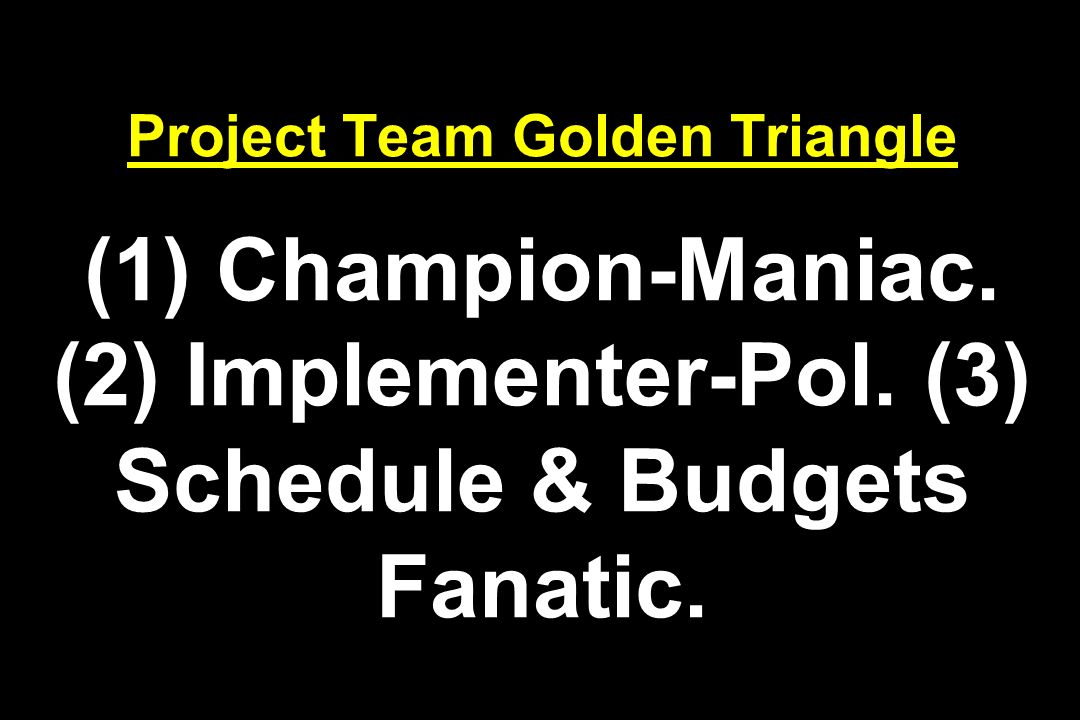 Project Team Golden Triangle (1) Champion-Maniac. (2) Implementer-Pol