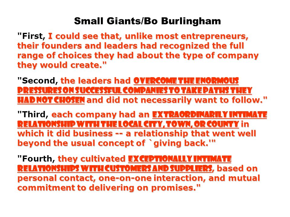 Small Giants/Bo Burlingham