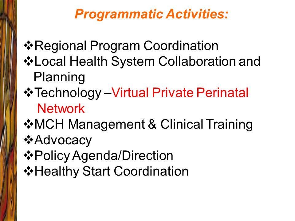 Programmatic Activities: