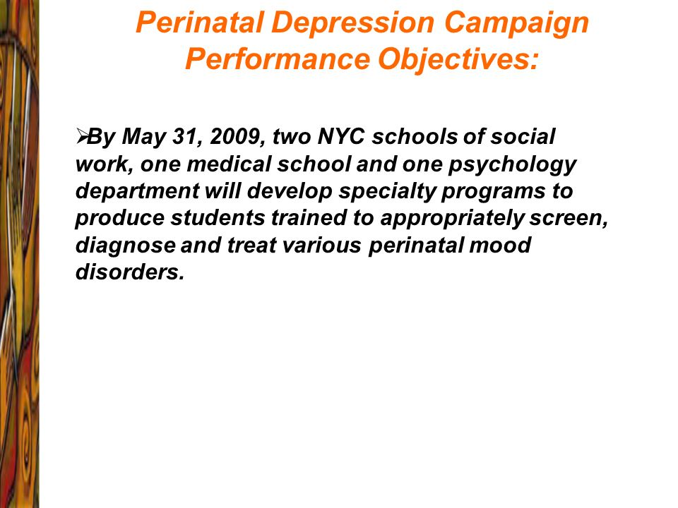 Perinatal Depression Campaign Performance Objectives:
