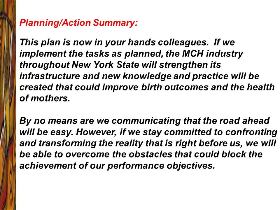 Planning/Action Summary:
