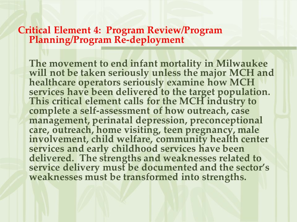 Critical Element 4: Program Review/Program Planning/Program Re-deployment