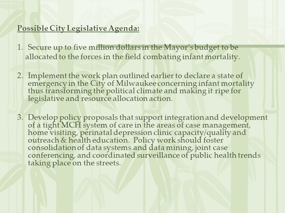 Possible City Legislative Agenda: