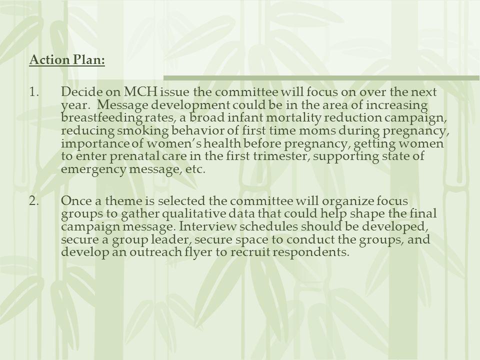 Action Plan: