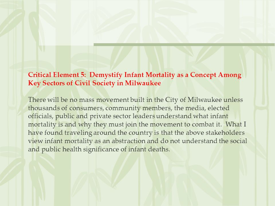 Critical Element 5: Demystify Infant Mortality as a Concept Among Key Sectors of Civil Society in Milwaukee