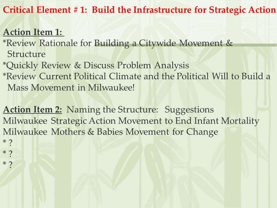 Critical Element # 1: Build the Infrastructure for Strategic Action!