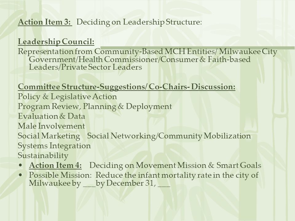 Action Item 3: Deciding on Leadership Structure: