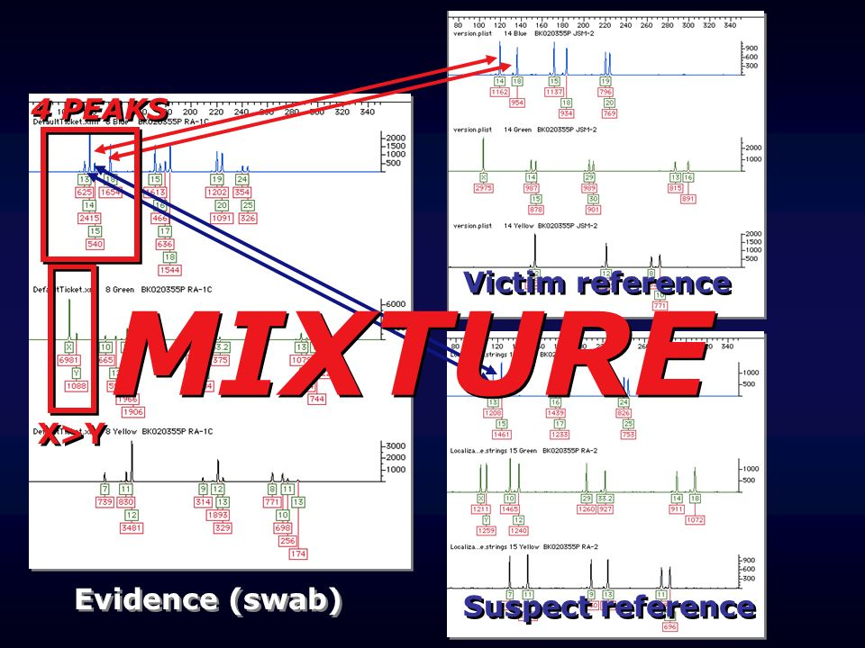MIXTURE 4 PEAKS Victim reference X>Y Evidence (swab)