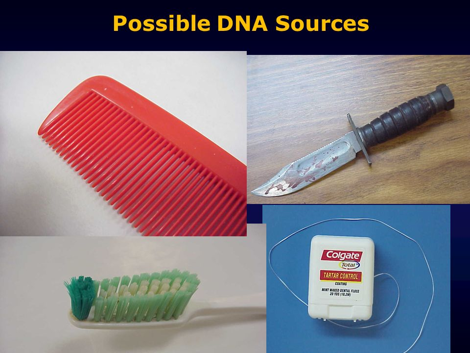 Possible DNA Sources Slide to show that with STR's we can do non-conventional evidence such as dandruff and skin cells from the handle of a knife.
