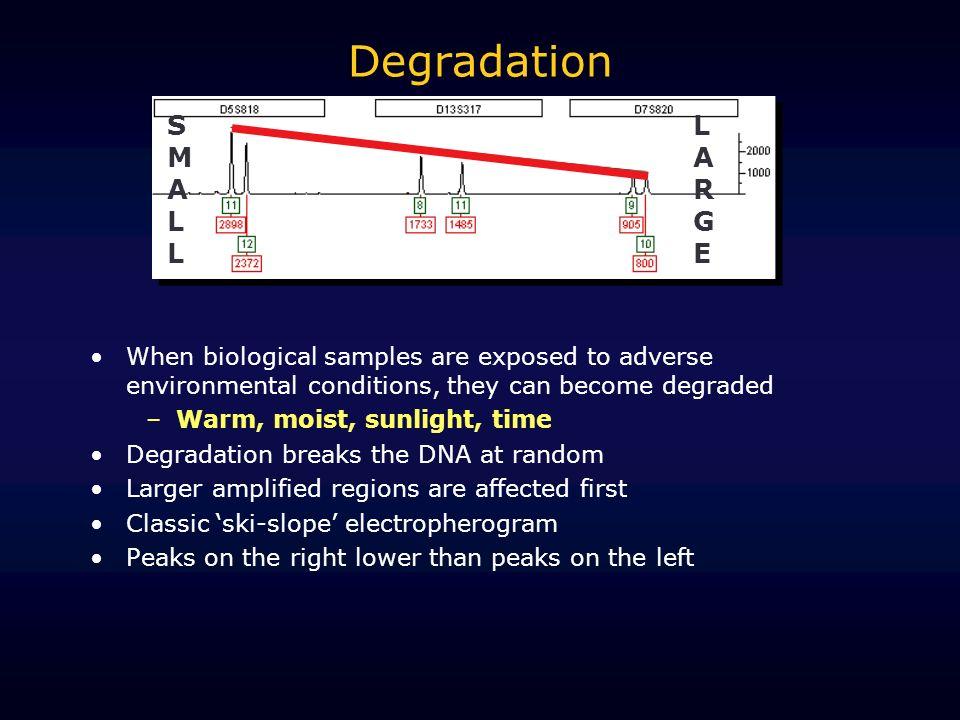 Degradation SMALL LARGE