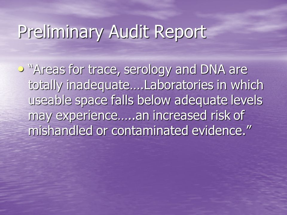 Preliminary Audit Report
