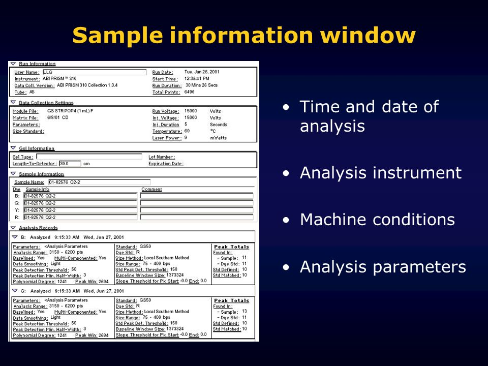 Sample information window