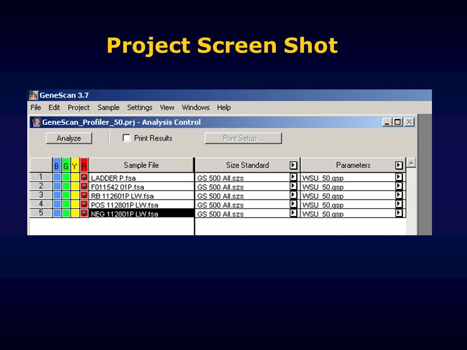 Project Screen Shot