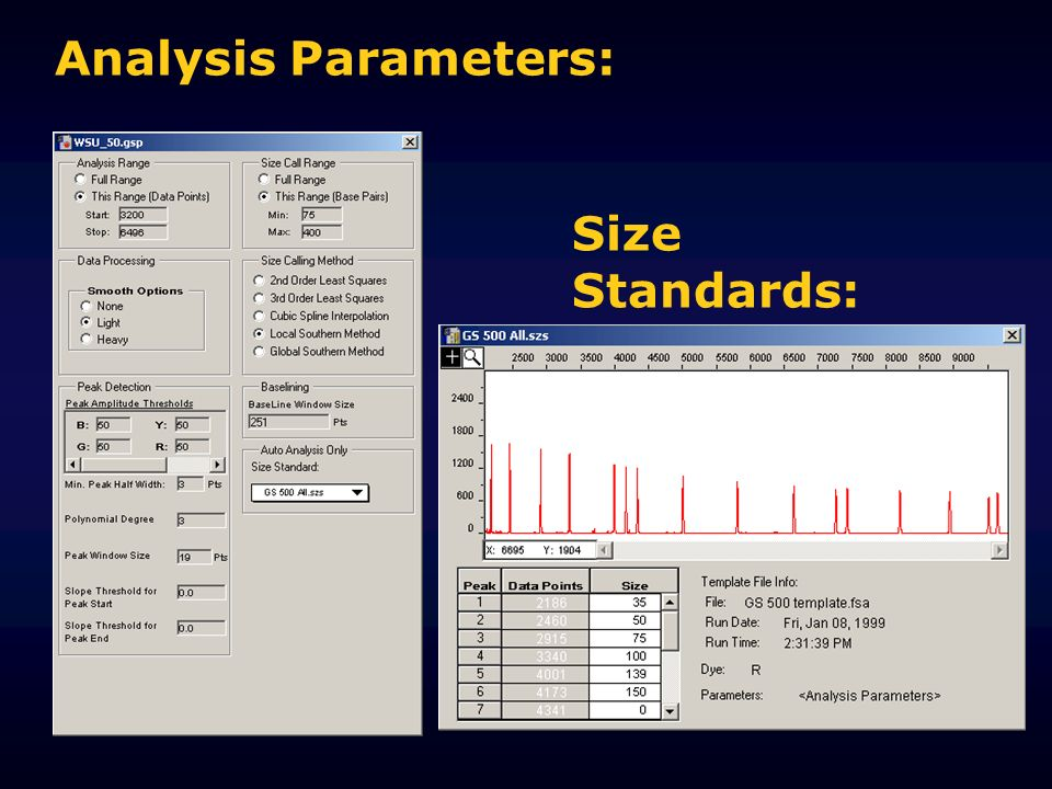 Analysis Parameters: Size Standards: