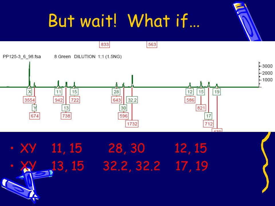 But wait! What if… XY 11, 15 28, 30 12, 15 XY 13, 15 32.2, 32.2 17, 19
