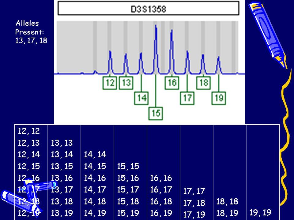 Alleles Present: 13, 17, 18 12, 12. 12, 13. 12, 14. 12, 15. 12, 16. 12, 17. 12, 18. 12, 19.